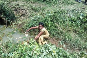 The Water Project: Lunyi Community, Fedha Mukhwana Spring -  Mary Mukhwana Fetching Water At The Spring
