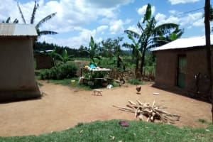 The Water Project: Shirugu Community, Jeremiah Mashele Spring -  Homestead With Chicken And Cat