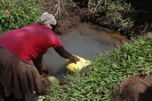 The Water Project: Ematetie Community, Weku Spring -  Fetching Water At The Spring