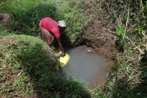 The Water Project: Ematetie Community, Weku Spring -  Fetching Water