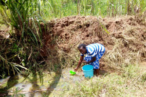 The Water Project: Ematetie Community, Chibusia Spring -  Fetching Water
