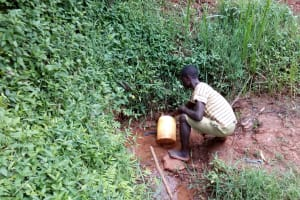 The Water Project: Asimuli Community, John Omusembi Spring -  Fetching Water At The Spring
