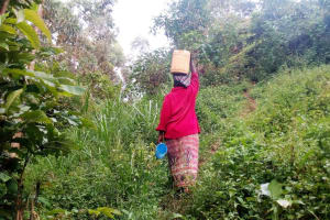 The Water Project: Koitabut Community, Henry Kichwen Spring -  Carrying Jerrycan Filled With Water Home