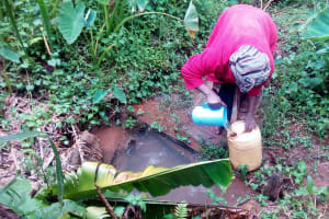 The Water Project: Koitabut Community, Henry Kichwen Spring -  Fetching Water