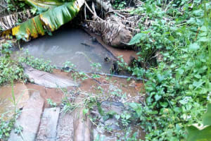 The Water Project: Koitabut Community, Henry Kichwen Spring -  Henry Kichwen Water Source