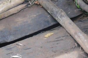 The Water Project: Chepnonochi Community, Chepnonochi Spring -  Cases Of Open Defecation In Latrine Floors