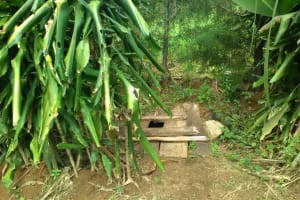The Water Project: Shitoto Community, Mashirobe Spring -  A Hole On The Ground Surrounded By Twigs Used As A Latrine