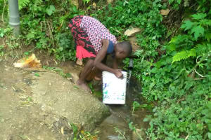 The Water Project: Shitoto Community, Mashirobe Spring -  Collecting Water From The Spring