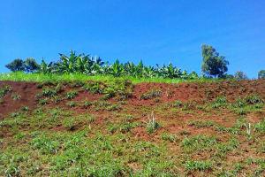 The Water Project: Upper Visiru Community, Wambosani Spring -  Community Landscape