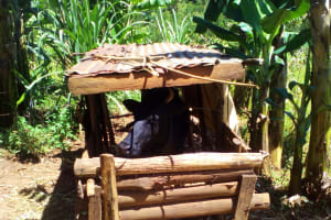 The Water Project: Upper Visiru Community, Wambosani Spring -  Cow House