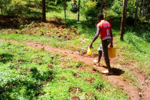 The Water Project: Upper Visiru Community, Wambosani Spring -  Walking To Collect Water