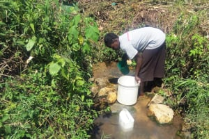 The Water Project: Emasera Community, Visenda Spring -  Fetching Water By Scooping