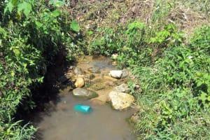 The Water Project: Emasera Community, Visenda Spring -  Unprotected Visenda Water Source