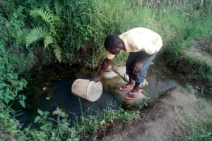 The Water Project: Elutali Community, Obati Spring -  Vincent Drawing Water At The Spring