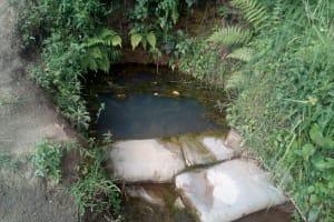 The Water Project: Elutali Community, Obati Spring -  Water Source Of Obati