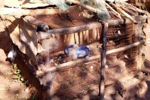 The Water Project: Irumbi Community, Shatsala Spring -  A Chicken Nest