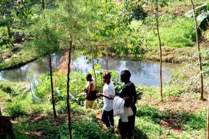 The Water Project: Irumbi Community, Shatsala Spring -  Gardens And Standing Water