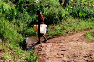 The Water Project: Irumbi Community, Shatsala Spring -  Returning Home With Buckets Filled With Water