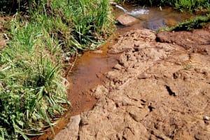 The Water Project: Irumbi Community, Shatsala Spring -  Shatsala Spring