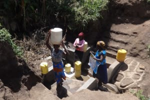 The Water Project: Shitungu Community, Omar Rashid Spring -  Clean Water