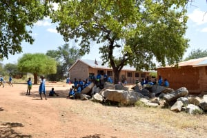 The Water Project: Kyulungwa Primary School -  School Grounds