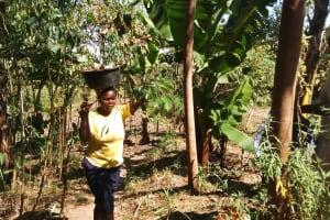 The Water Project: Shiyunzu Community, Imbukwa Spring -  Spring Protection