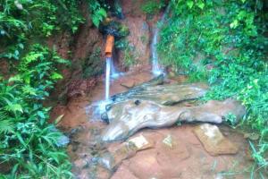 The Water Project: Shirakala Community, Ambani Spring -  Kenya Ambanis Water Source