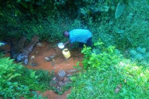 The Water Project: Shirakala Community, Ambani Spring -  Kenya Drawing Water From The Unprotected Water Point
