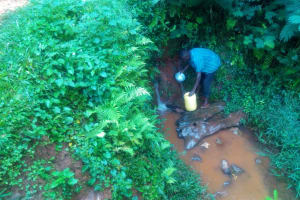 The Water Project: Shirakala Community, Ambani Spring -  Kenya Filling Jerrycan With Spring Water