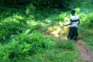 The Water Project: Shirakala Community, Ambani Spring -  Kenya Walking To Spring To Collect Water