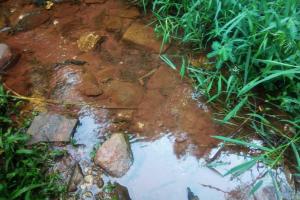 The Water Project: Shirakala Community, Ambani Spring -  Kenya Water Flowing At Ambani Springs Drainage