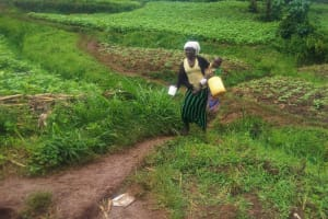 The Water Project: Emulakha Community, Alukoye Spring -  Woman Walks Home With Jerrycan Filled With Spring Water
