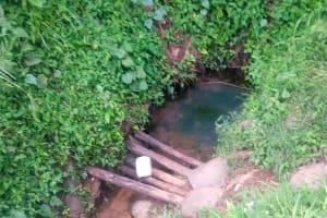 The Water Project: Nambatsa Community, Odera Spring -  The Water Source