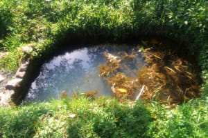 The Water Project:  Water Point Of Okumu Spring