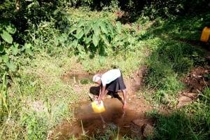 The Water Project: Irumbi Community, Okang'a Spring -  Drawing Water At Okanga Spring