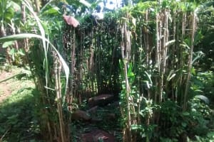 The Water Project: Musiachi Community, Thomas Spring -  A Bush Used As A Bathroom