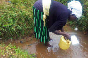 The Water Project: Emulakha Community, Alukoye Spring -  Mary Scoops Water At Their Unprotected Spring