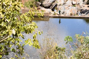 The Water Project: Kyetonye Community A -  Sand Dam Further Down The River