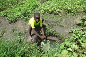 The Water Project: Mahera Community, 3 Robolla Street -  The Swamp