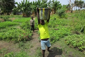 The Water Project: Mahera Community, 3 Robolla Street -  Carrying Water