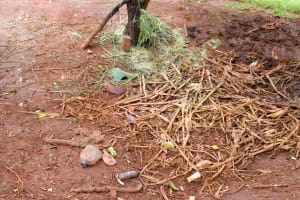 The Water Project: Mbakoni Community -  Garbage Site