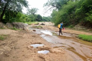 The Water Project: Kivandini Community -  Ndue Nguu River