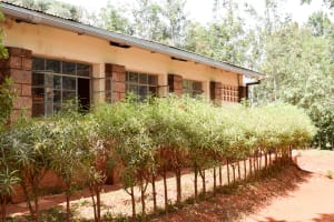 The Water Project: Kaani Lions Secondary School -  Gutter System