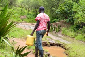 The Water Project: Mbakoni Community A -  Carrying Water