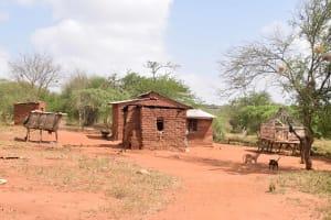 The Water Project: Syatu Community A -  Nyungu Household