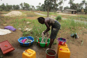 The Water Project: Molokoh Community, 720 Main Motor Road -  Daily Activities
