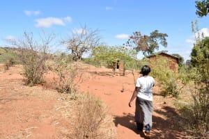 The Water Project: Ilandi Community -  Muthungya Household