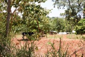 The Water Project: Uthunga Community A -  Community Landscape