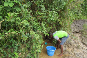 The Water Project: Molokoh Community, 720 Main Motor Road -  Fetching Water