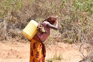 The Water Project: Ngitini Community C -  Carrying Water